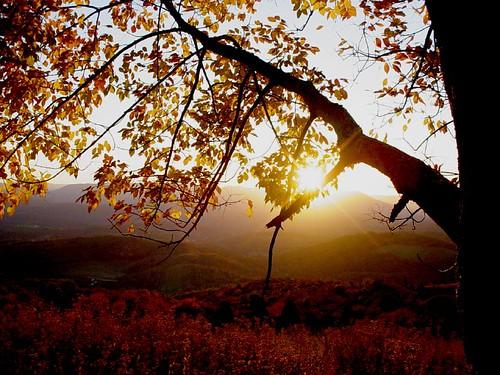 autumn sunset brown mountains landscape geotagged virginia explore blogged 4seasons faa geo:lat=37336657 geo:lon=80558496