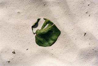 Mauritius_1996_004