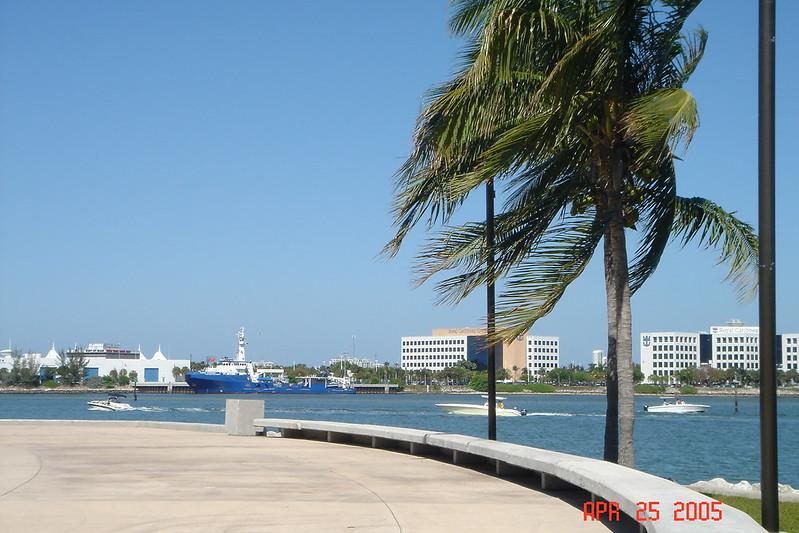 Dodge Island from Bayfront Park