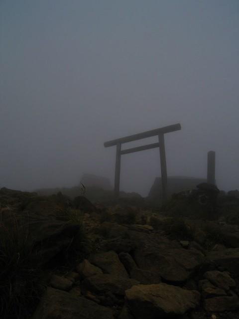 a torii