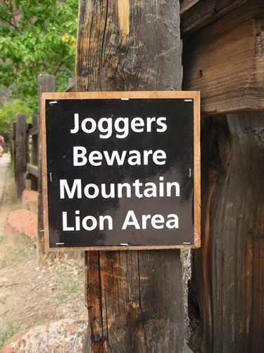 One of my favorite signs: Joggers Beware Mountain Lion Area @ Zion National Park @ZionNPS