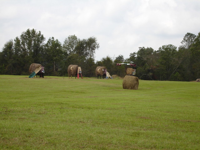 Hear No Evil, See No Evil, Speak No Evil at Jim Bird's Hay Creations, Forkland AL