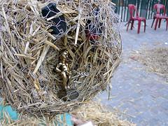 nest(0.0), branch(0.0), scrap(0.0), bird nest(0.0), straw(1.0),