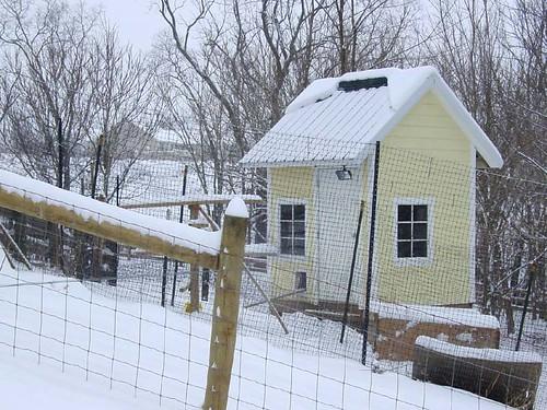 4 Chimney Farm chicken coop in the snow