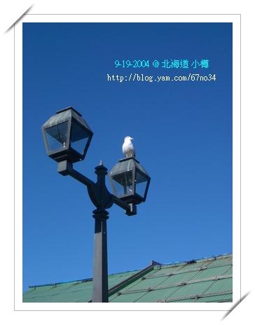 092004Hokkaido 2971