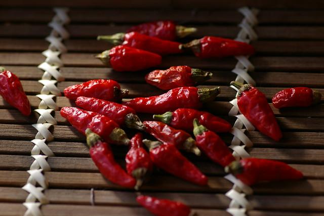 Okinawa Chili Pepper / 島唐辛子