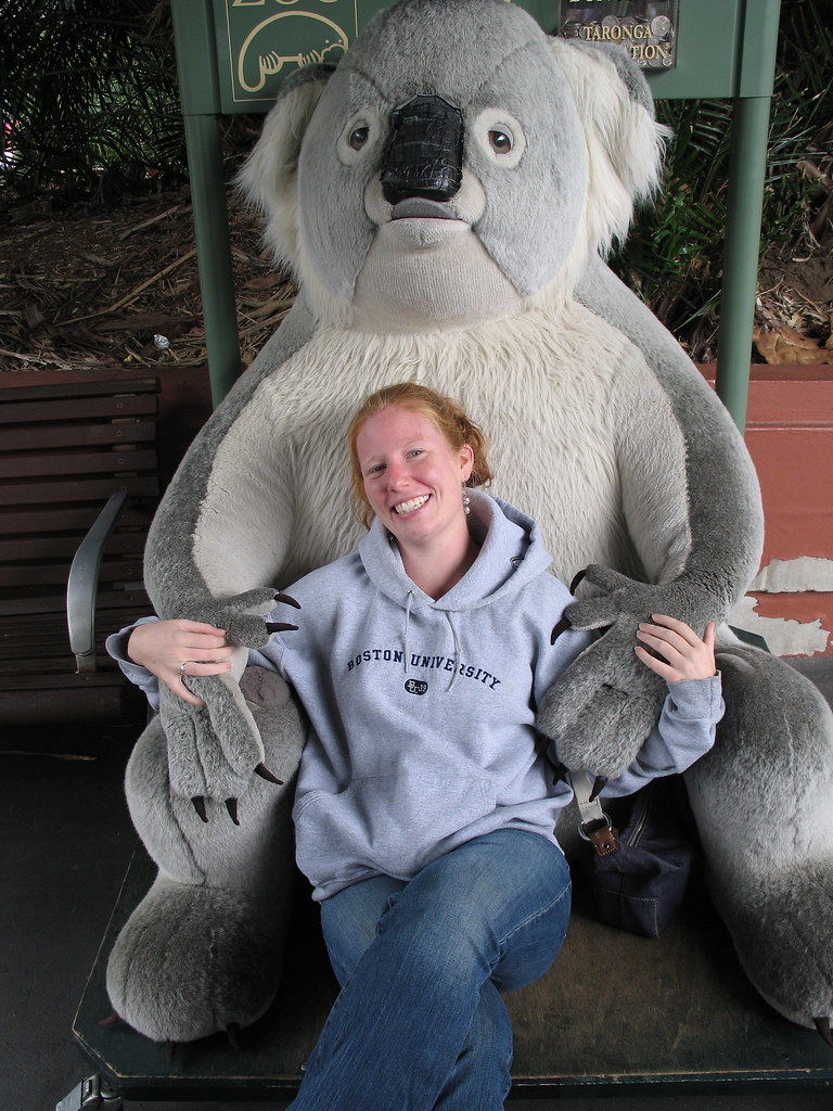 Koala Hug | Man if only koala were this big in real life ... - photo#40
