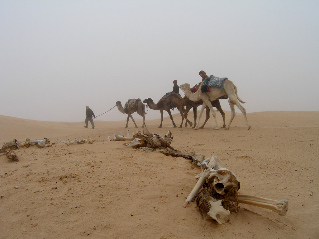 TunisiaSahara02
