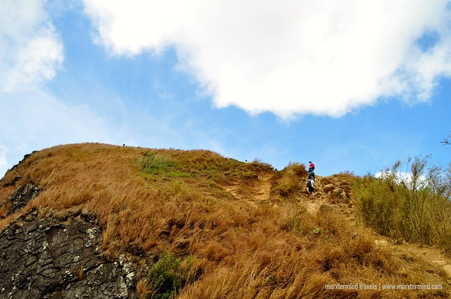 Trail to Pico de Loro