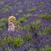 Grandi speranze / High hopes (Banstead, Surrey, United Kingdom) by AndreaPucci