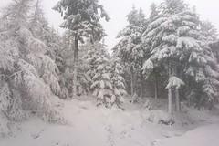 Skvělé lyžařské podmínky v Jakuszycích