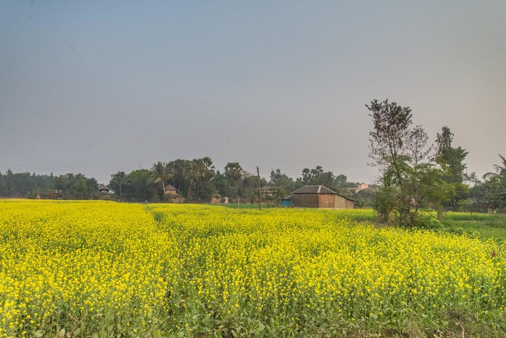 Bishnupur_251