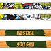 Pánské lyže Westige comics