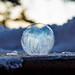 Frozen Ice Soapbubbles