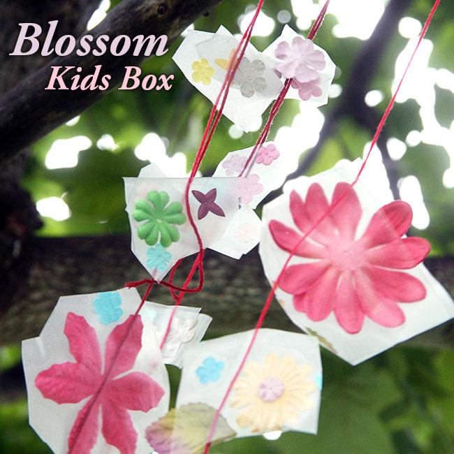 Blossom-Box_650