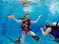 swimming, sports, leisure, underwater sports, water sport,