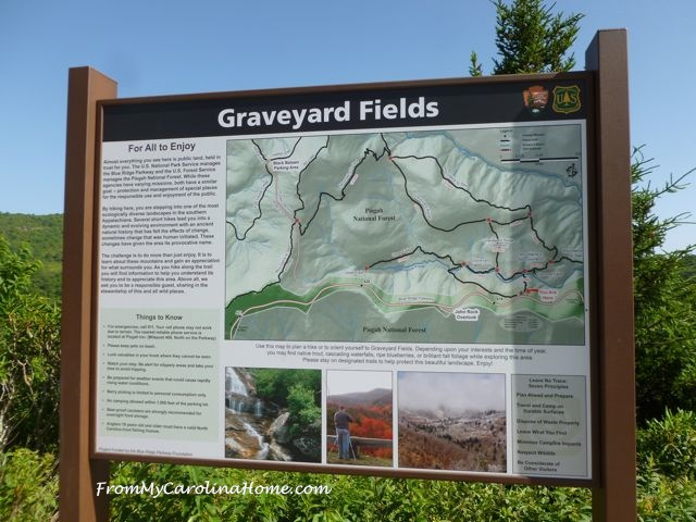 Graveyard Fields - 1