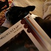 Reading #Numenera with the dog. #rpg