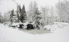 Highland Pond 2 - Snowpocalypse 2017_34
