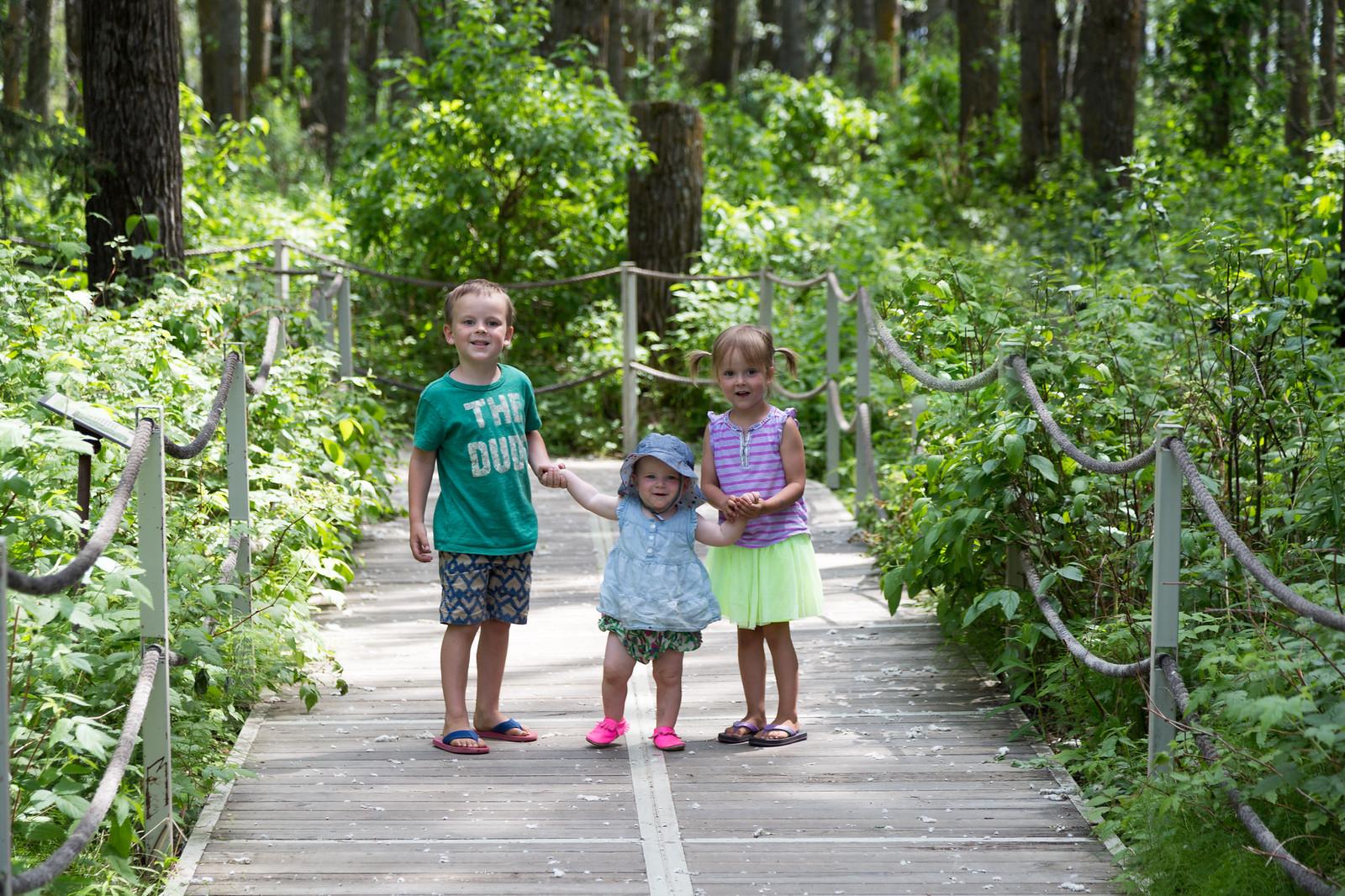 2015-06-19 Jurassic Forest-8980.jpg