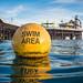 Swim Area Buoy and Brighton Pier by lomokev