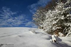 MONTE CAMORLO in invernale