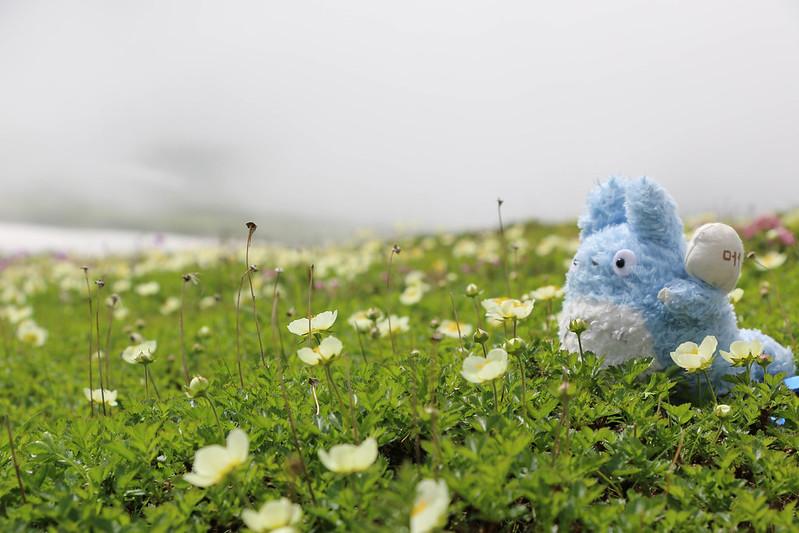 2014-07-20_01151_北海道登山旅行.jpg