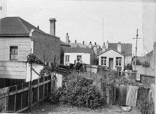 Backyards in Substandard Housing Area, looking towards Perth Avenue, 1957