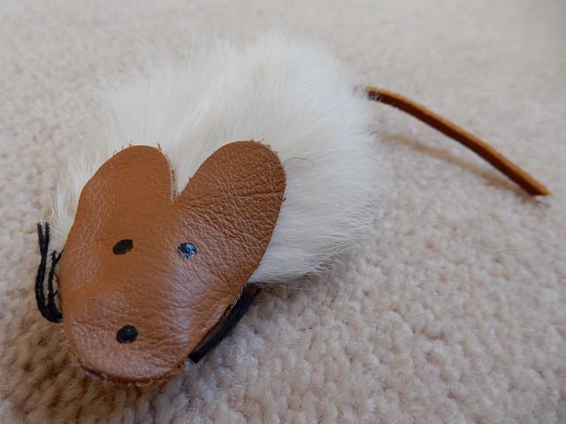 mice are nice! (2)
