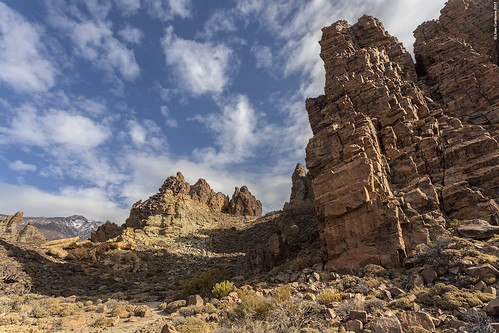 Teide National Park #5