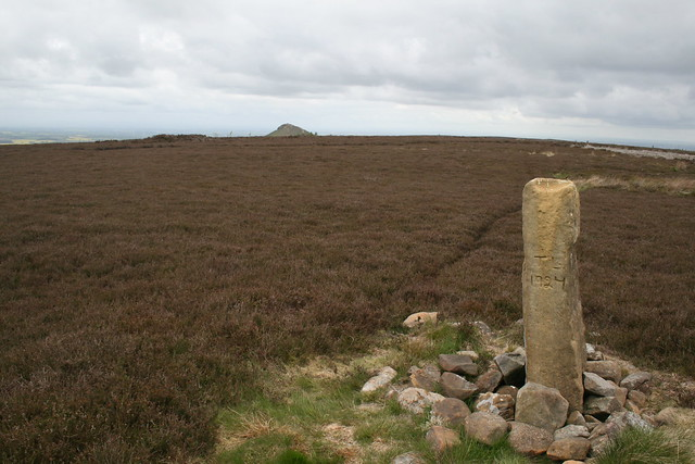 Great Ayton Moor with Roseberry Topping