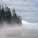 Fog Rolling onto China Beach, B.C.
