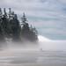 Fog Rolling onto China Beach, B.C.