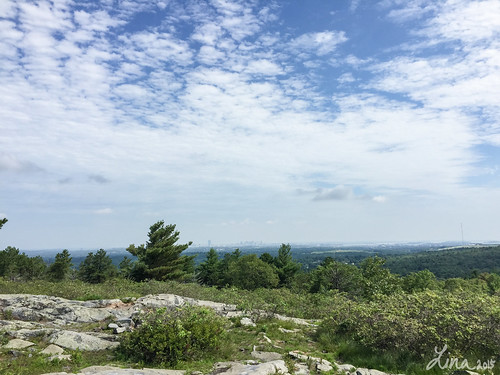 Hiking in the Blue Hills Reservation