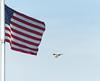 patriotic swainsons hawk