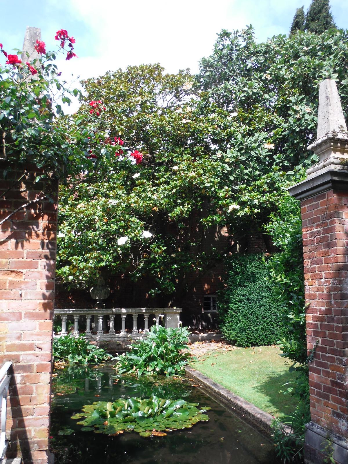 Water Garden with Magnolias SWC Walk 15 : Winchester Circular