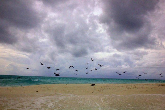 #travelbloggerindia #travelblogmaldives #maldivestourism