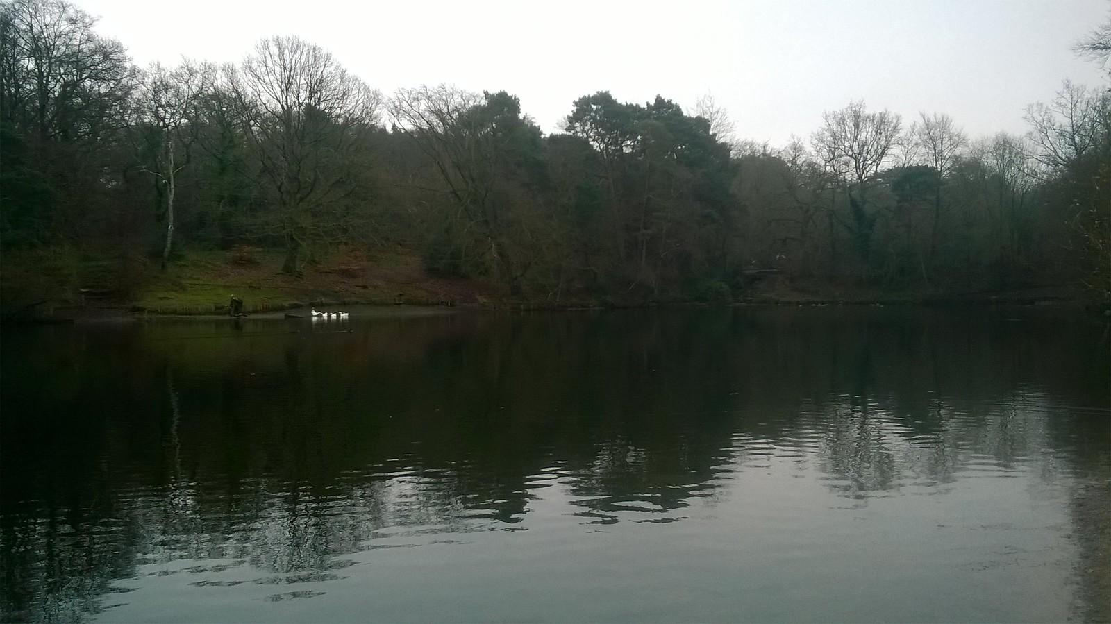 Keston pond