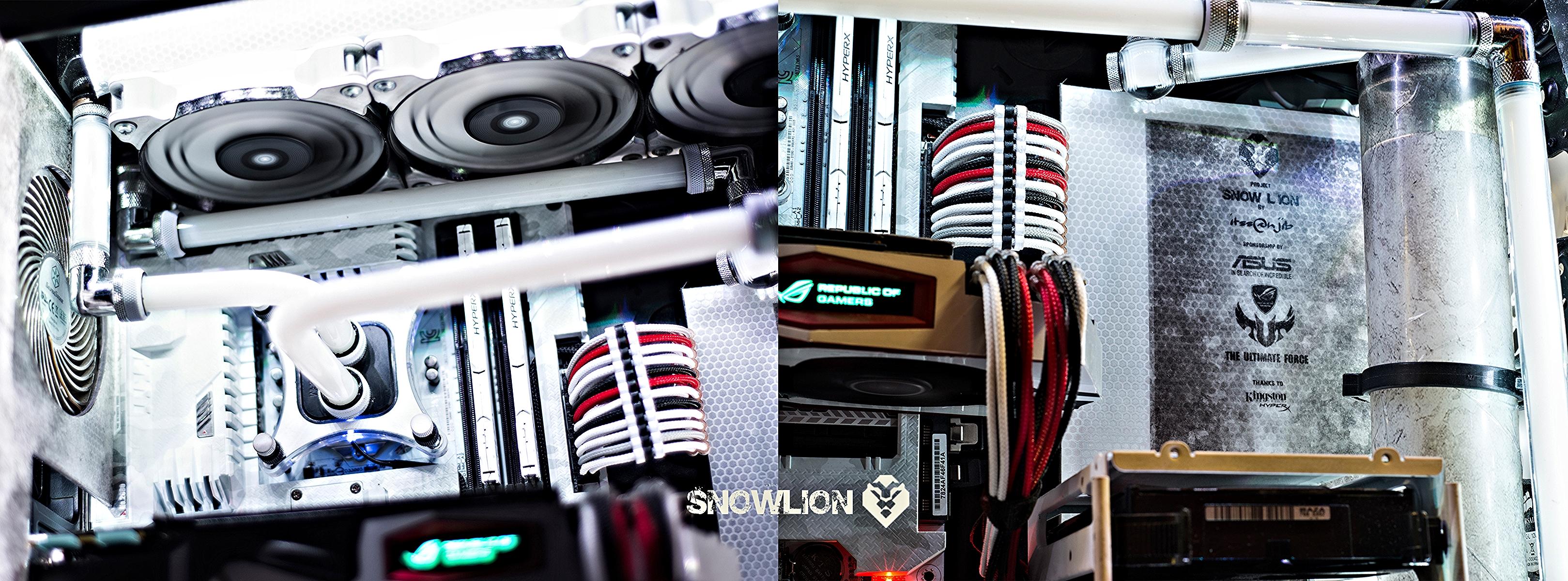 snowlion84