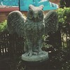 #inanimatethings my dog has barked at: this owl statue is kinda startling.