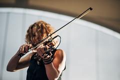 bowed string instrument, violinist, string instrument, violin, music, close-up, violist, string instrument,