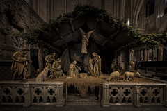 The Nativity at St. Patrick's Cathedral