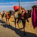 On The Way To Kasur. by Kaleem Ullah.