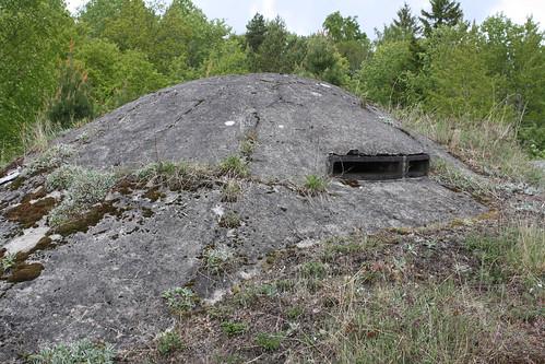 Håøya fort (88)
