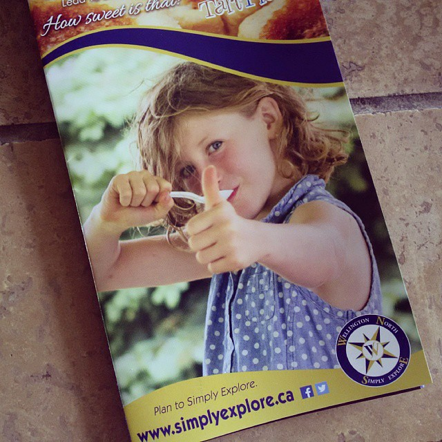 Check it out!!! Little Lady is on the cover of the Wellington North Simply Explore and Butter Tart Trail Brochure!!! @simplyexplore #WellingtonNorth #OilyPhotographer #CommunityPhotographer #PamelaZmijaPhotography #MountForest #ButterTartTrail