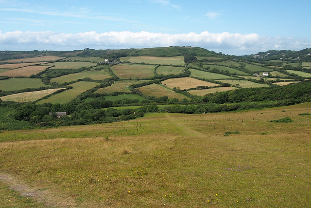 View inland from the coast path east of Charmouth