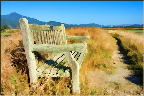 bench path trail marincounty weatheredwood photoshopelements mttamalpais weatheredbench cortemaderamarsh rogerjohnson topazsimplify downunderchallenge898