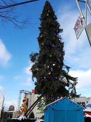 Montreal Ugly Christmas Tree