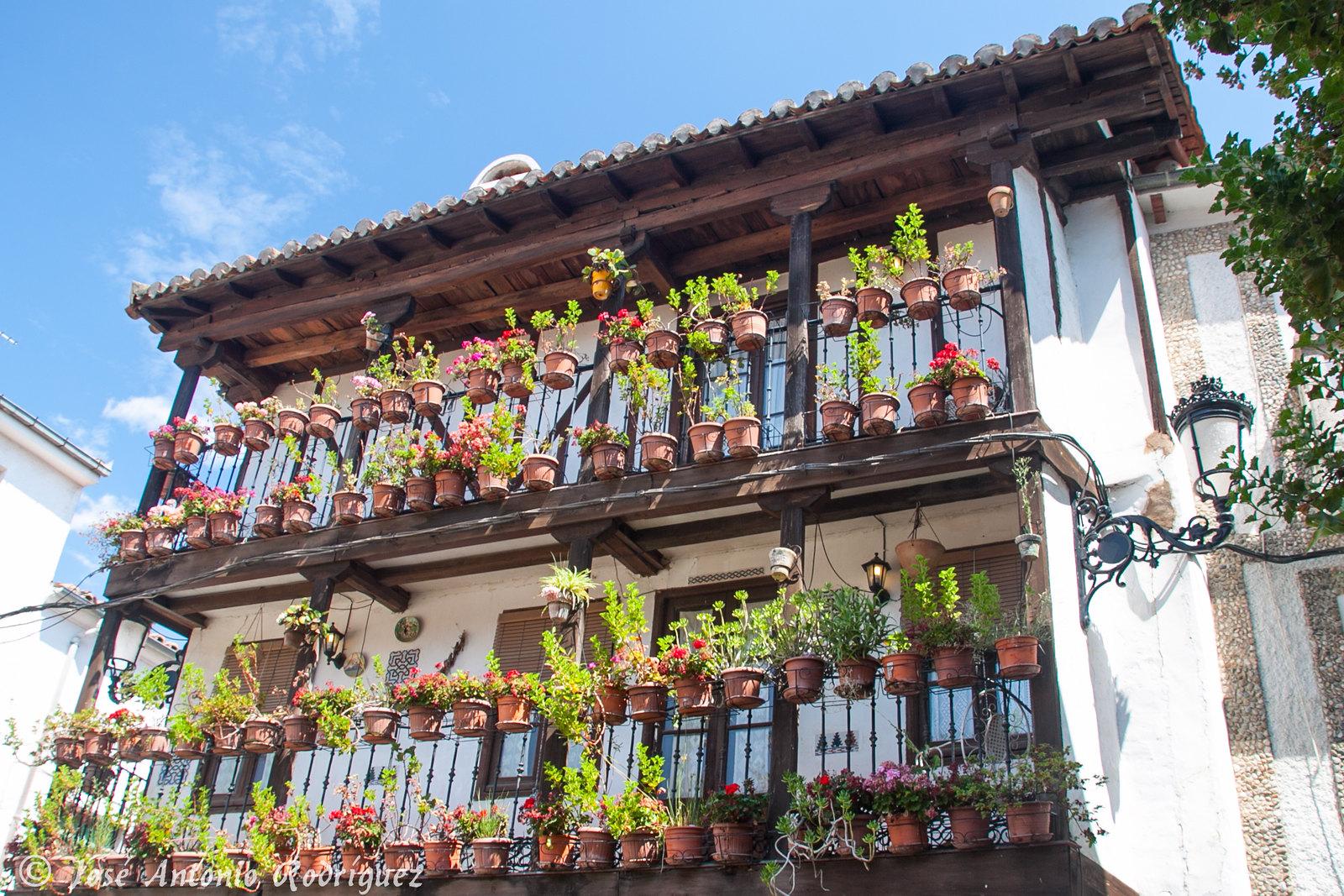 En Candeleda (Ávila)