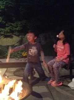BBQ  & bonfire